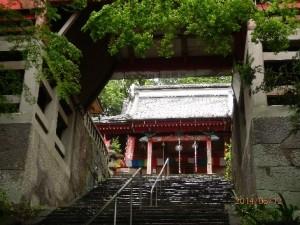 清水寺見学風景