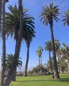 サンタモニカ海岸通り公園