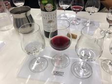 ワインのテイスティング風景2 (2)